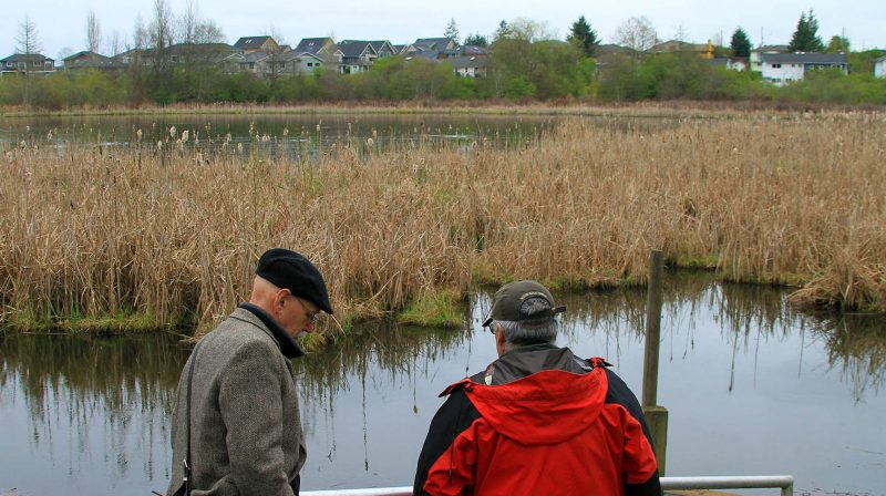 Buttertubs Marsh: a community asset in Nanaimo