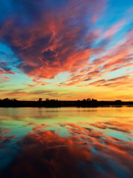 Saving wetlands is a resolution Canada must keep