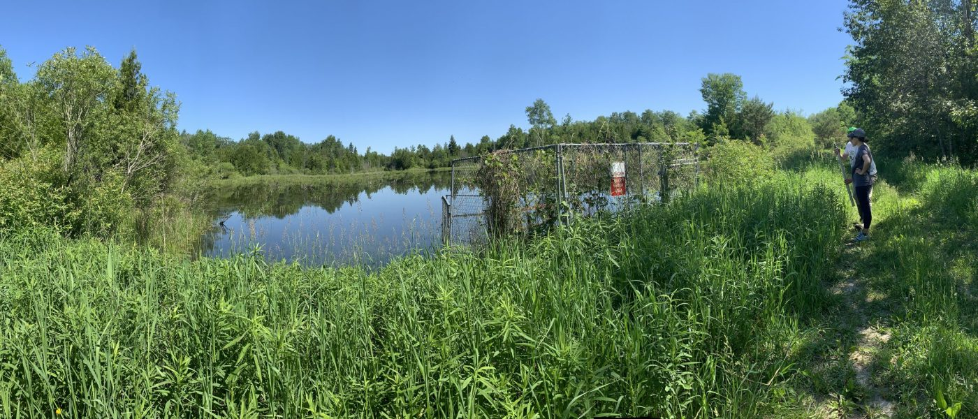 I learned wetlands are hard to build. Really hard. It's better to keep the wetlands we have than build new ones.