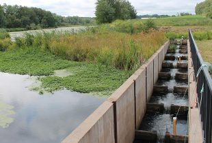 Building better fish ladders