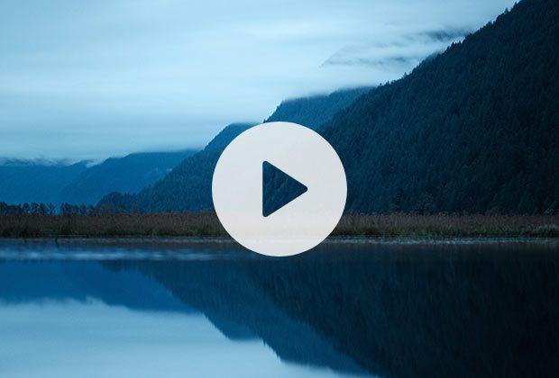 Watch:  See more Pitt-Addington Marsh