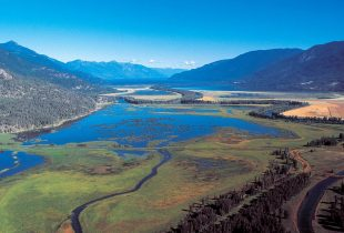 British Columbia estuary ranking improves with technology