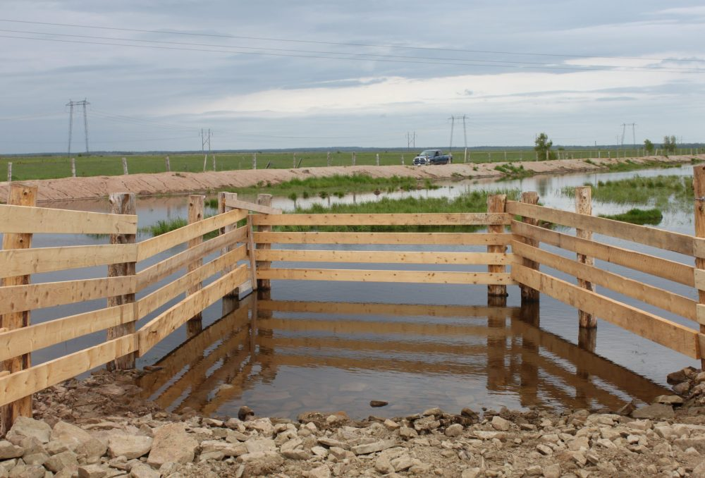 Newly created watering ponds allow the natural vegetation to filter and clean the water, helping stave off droughts, while also allowing the native wildlife to flourish.The ponds arefencedand hardened slips are created to allow cattle to drink withoutimpactingthe wetland.