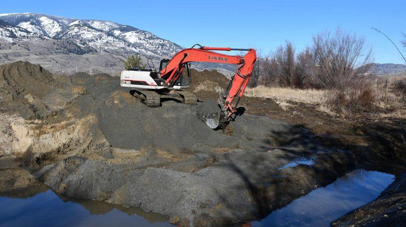 Species at risk focus of wetland restoration in B.C.'s South Okanagan