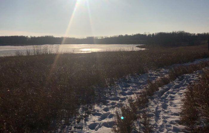 A wetland on the Zibin project is a beautiful sight, even in winter.