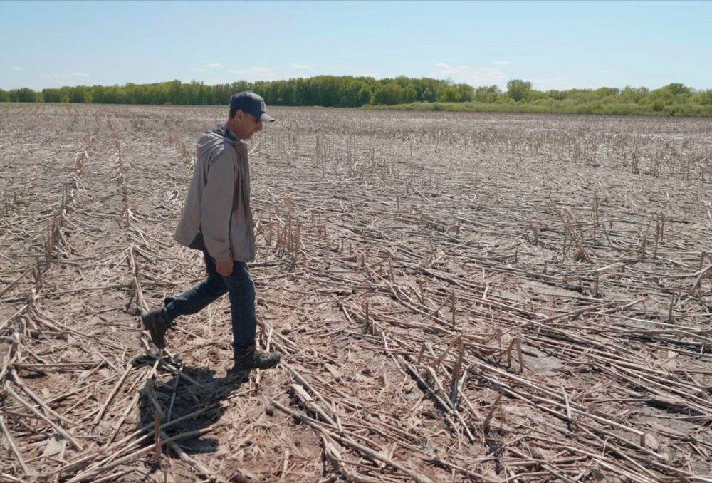 Bernard Filion walks on land within the Lac Saint-Pierre floodplain in a photo still from the TVO documentary Striking Balance, which aired in November 2020.