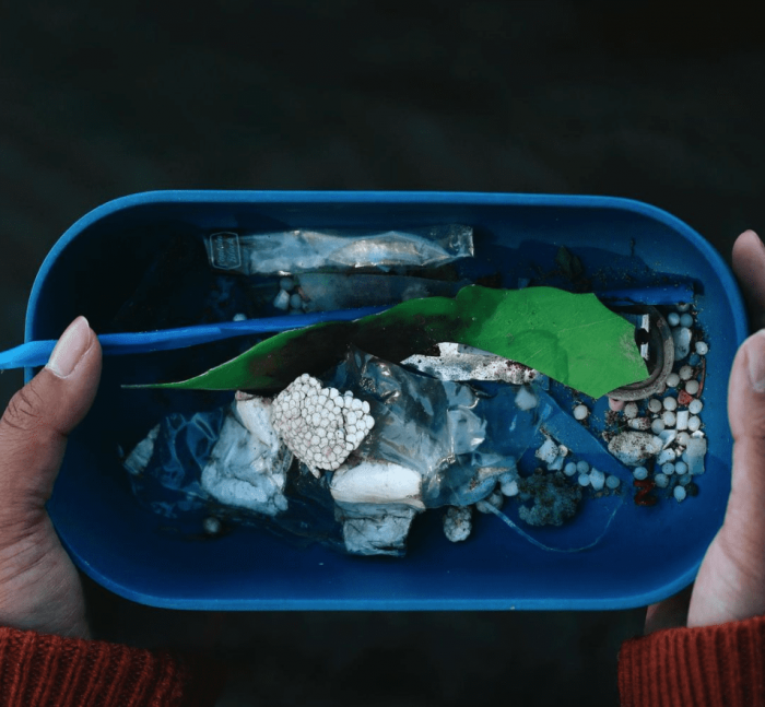 Plastic collected at Petrie Island wetlands