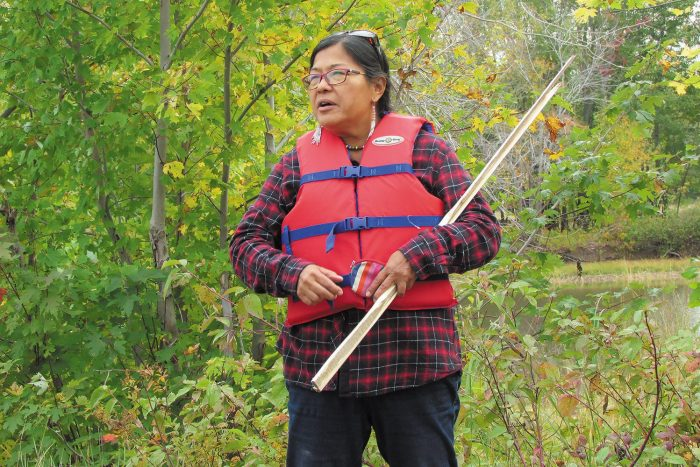 Cecelia Brooks, the Water Grandmother at the Canadian Rivers Institute, the Water Grandmother at the Canadian Rivers Institute, shares her ancestors' wild rice harvesting methods in October 2020 at a DUC-restored wetland along the Wolastoq. Rice harvest by local First Nations is a practice that was limited by land restriction for decades. Now, communities are reestablishing the annual tradition.