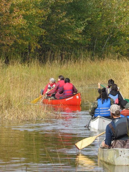 Conserving the wetlands of the Wolastoq
