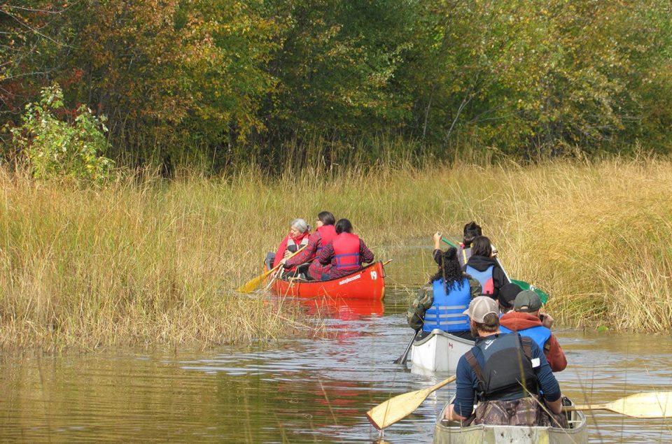 Wild rice canoes