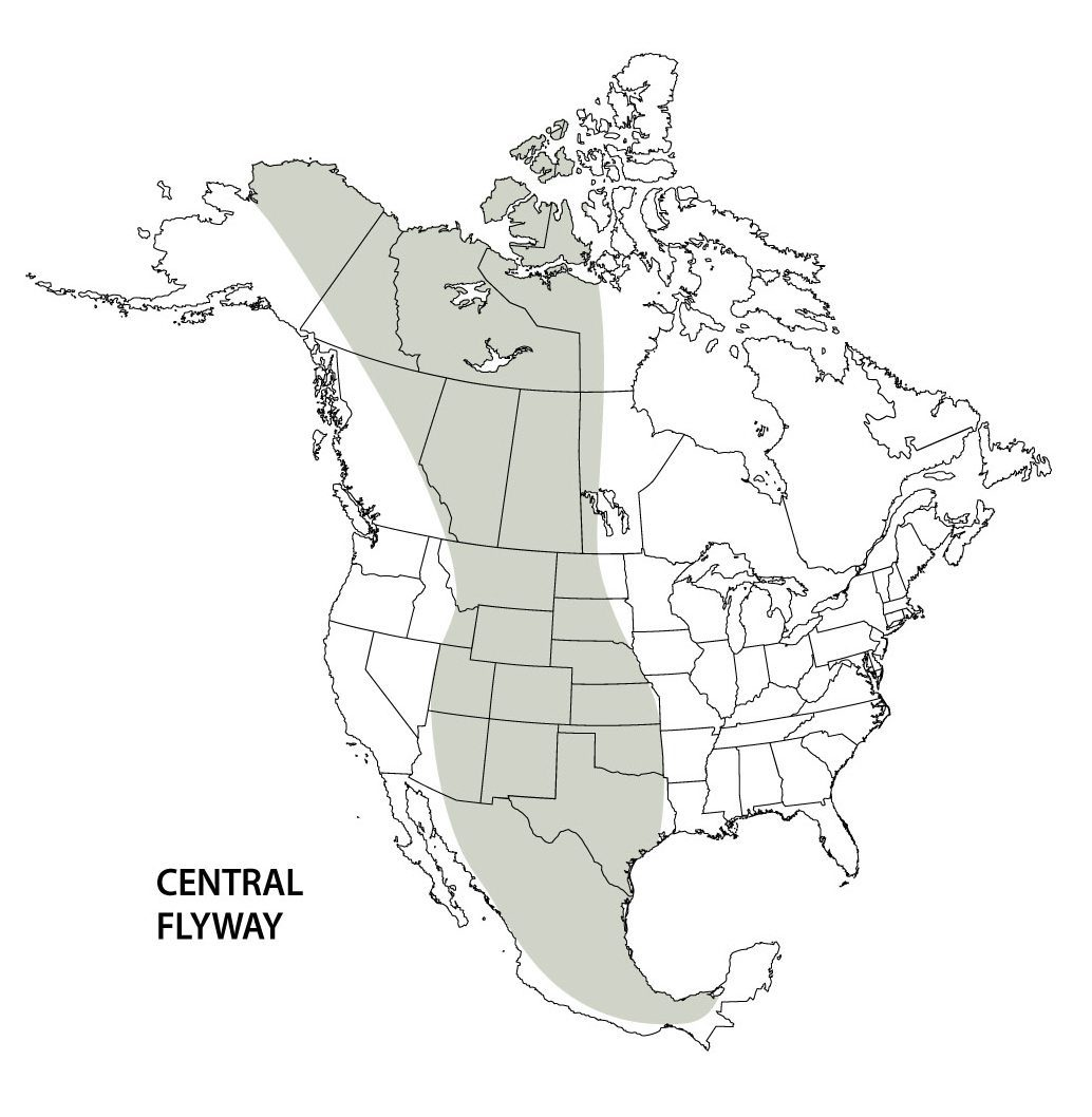 Central flyway map