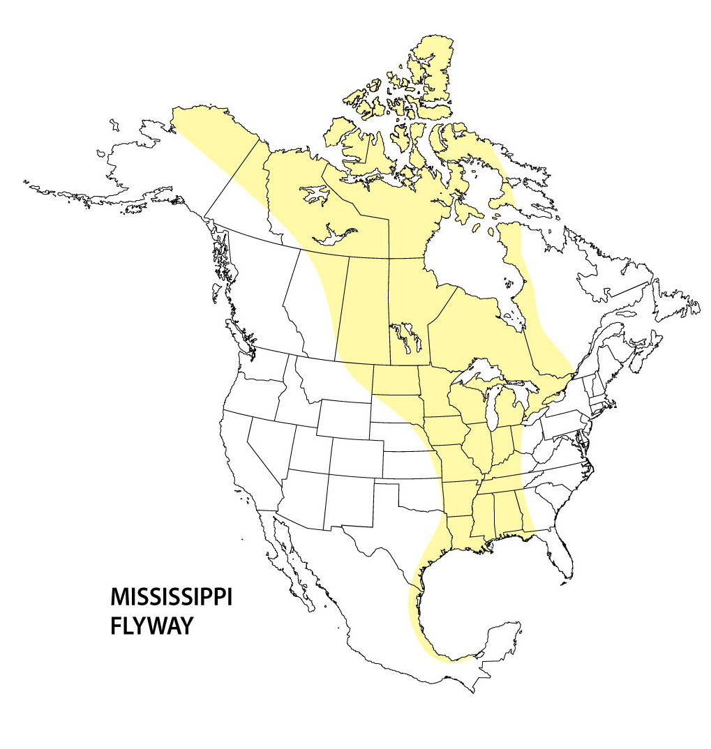 Mississippi flyway map